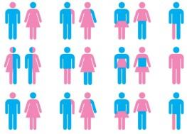 GenderGraphic-e1433379746312-655x473